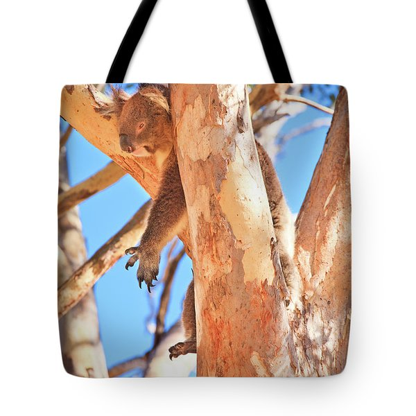 Tote Bag featuring the photograph Hanging Around, Yanchep National Park by Dave Catley