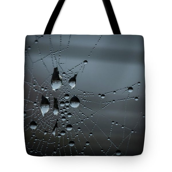 Tote Bag featuring the photograph Hanging by Ian Thompson