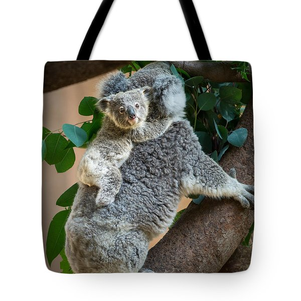 Hanging On Tote Bag by Jamie Pham