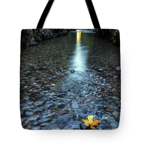 Tote Bag featuring the photograph Hanging On by Pierre Leclerc Photography