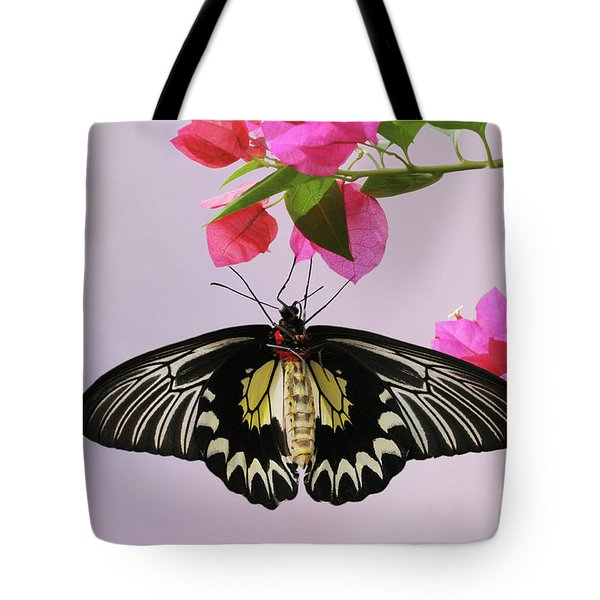 Hanging On V2 Tote Bag