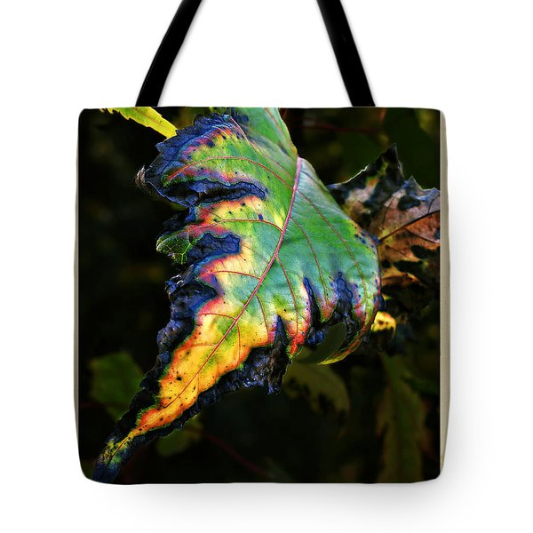 Tote Bag featuring the photograph Hanging Out by Joan  Minchak