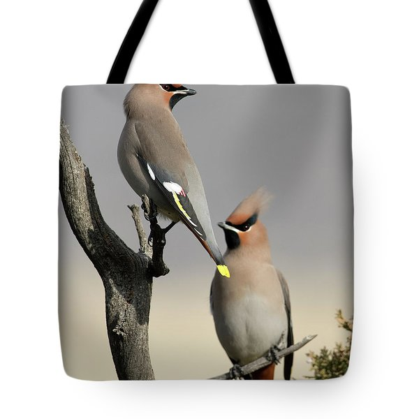 Hanging Out With The Boys Tote Bag