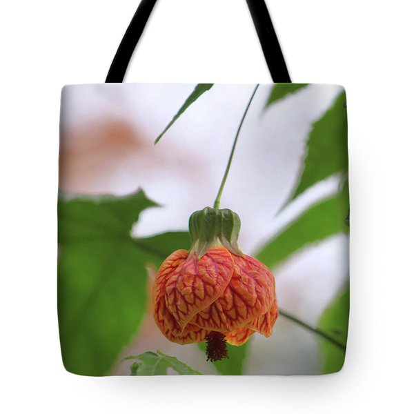 Tote Bag featuring the photograph Hanging There by Deborah  Crew-Johnson
