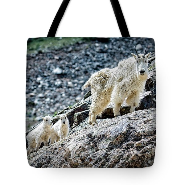 Tote Bag featuring the photograph Hanging With The Kids by Bitter Buffalo Photography