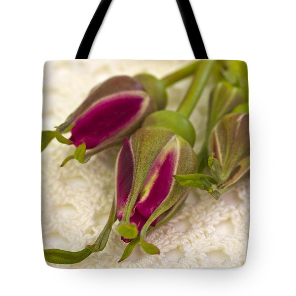 Hansa Rose Buds Tote Bag by Sandra Foster