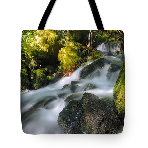 Hanson Falls Tote Bag by Larry Ricker