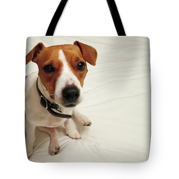 Happiness Is A Cute Puppy Tote Bag