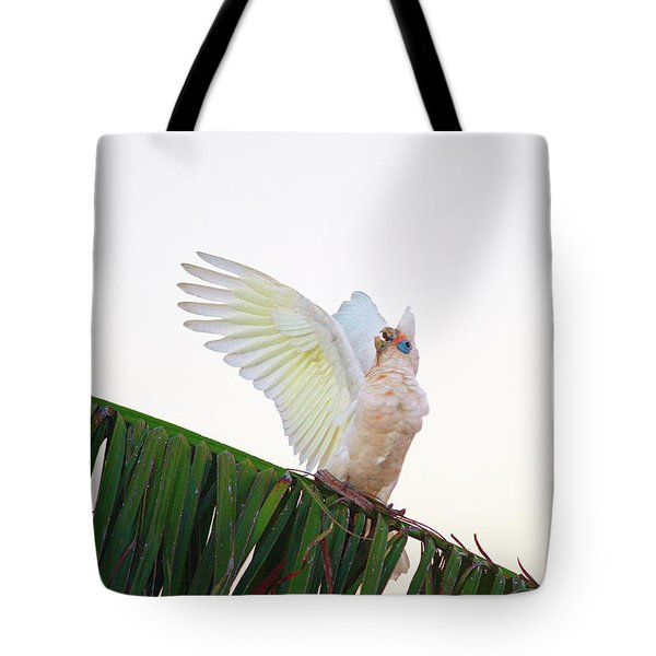Happy Corella 2 Tote Bag