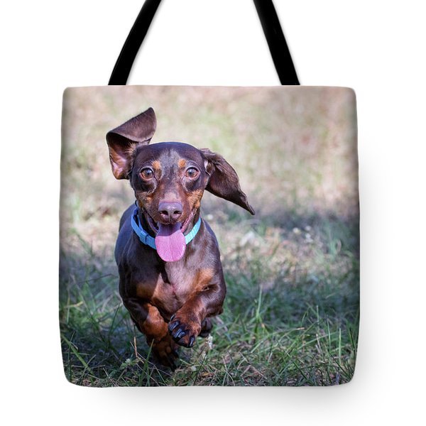 Happy Dachshund Tote Bag by Stephanie Hayes