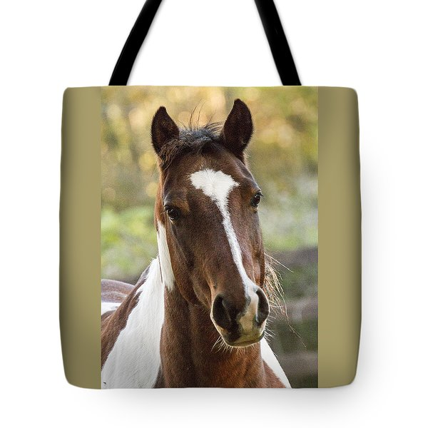 Happy Horse Tote Bag