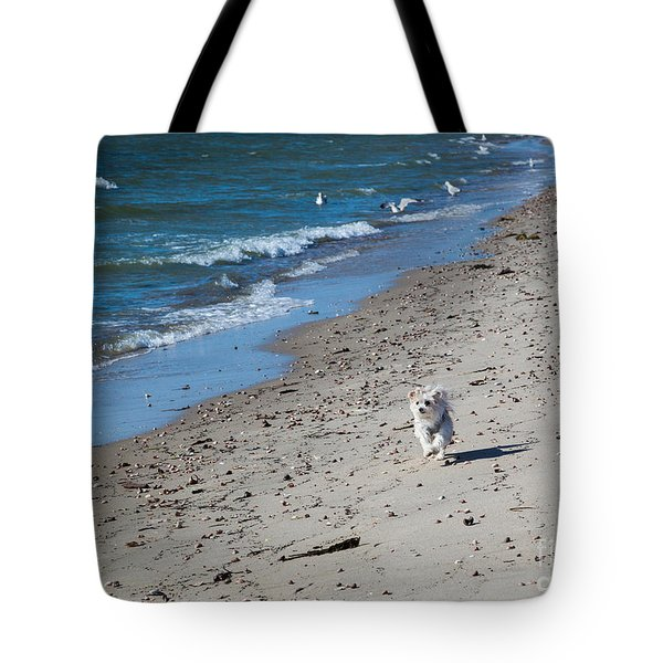 Tote Bag featuring the photograph Happy I Am by Michelle Wiarda