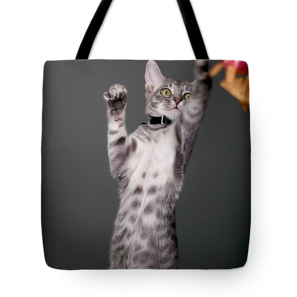 Happy Kitty Tote Bag