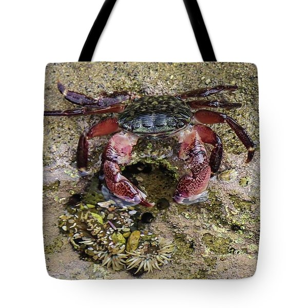 Happy Little Crab Tote Bag