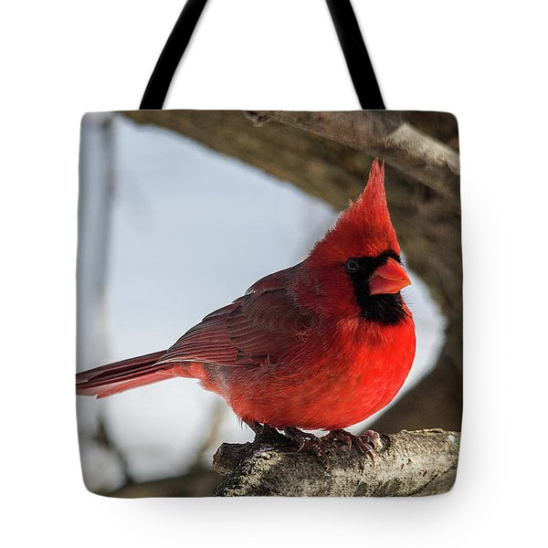 Happy Mister Cardinal Tote Bag
