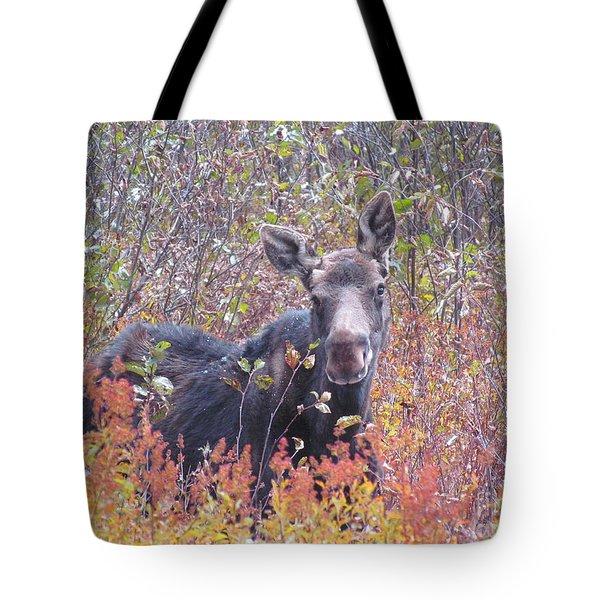 Happy Moose Tote Bag by Elizabeth Dow