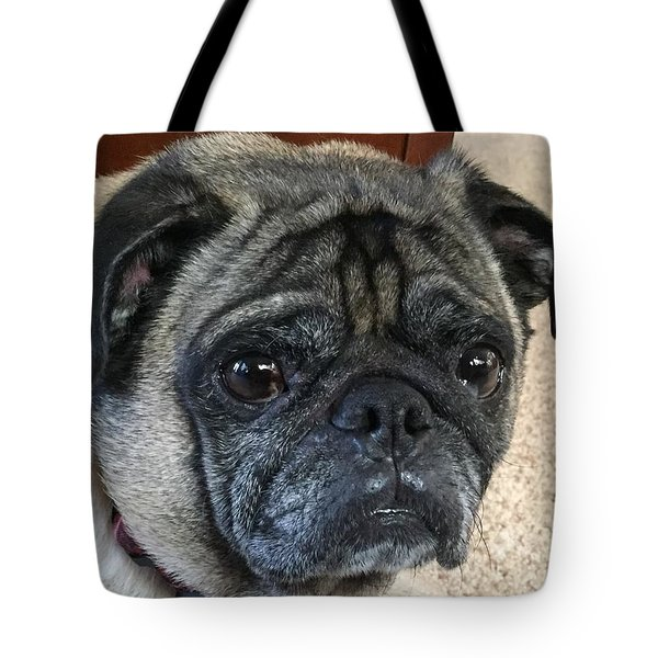 Happy Pug Tote Bag by Russell Keating