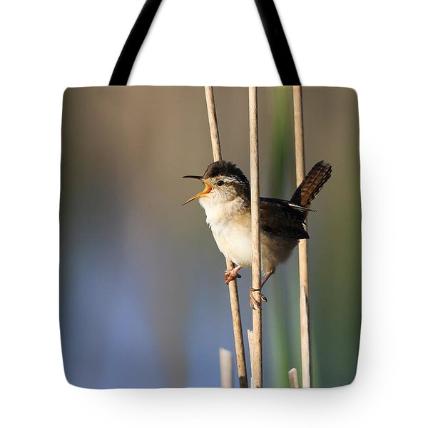 Happy Song Tote Bag by Gary Hall