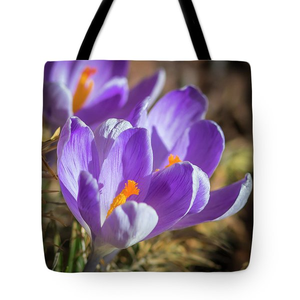 Tote Bag featuring the photograph Harbinger by Mark Mille