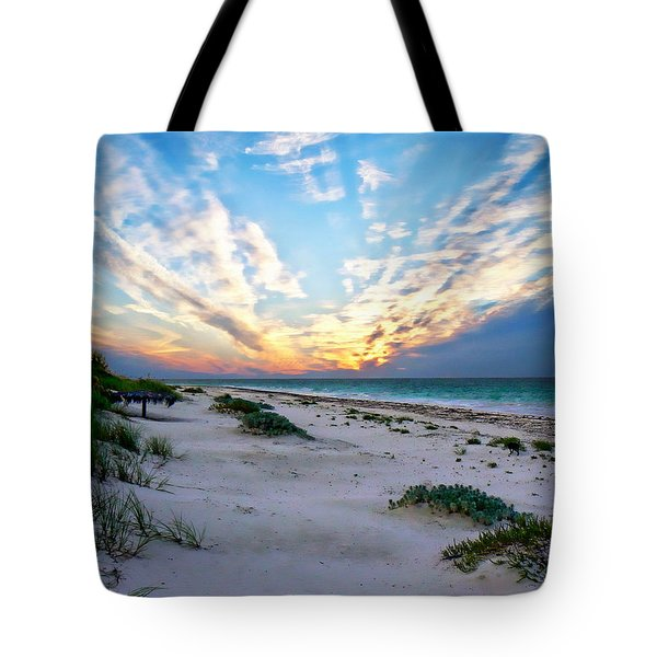 Harbor Island Sunset Tote Bag by Anthony Dezenzio