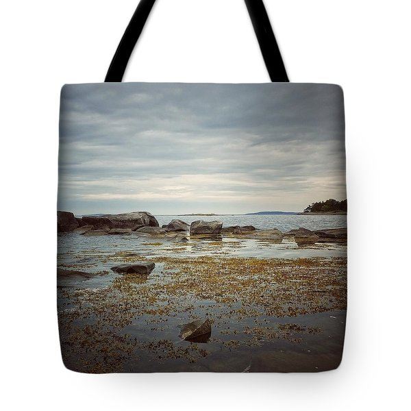 Tote Bag featuring the photograph Harbor by Karen Stahlros