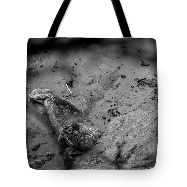 Harbor Seal Pup Monochrome  Tote Bag