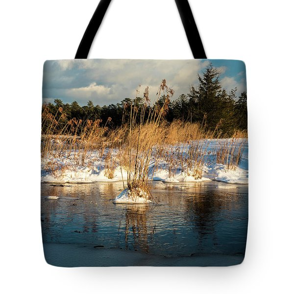 Tote Bag featuring the photograph Hard Frosts And Icy Drafts by Louis Dallara