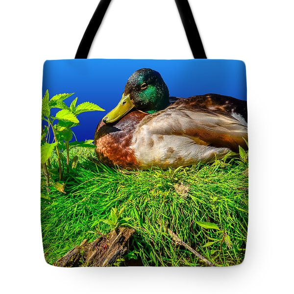 Tote Bag featuring the photograph Hard Luck Duck by Brian Stevens