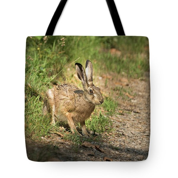 Hare In The Woods Tote Bag