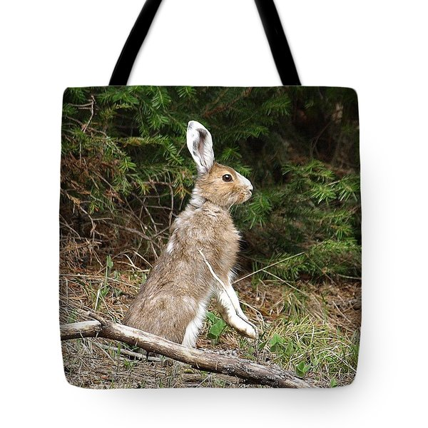 Hare That Tote Bag