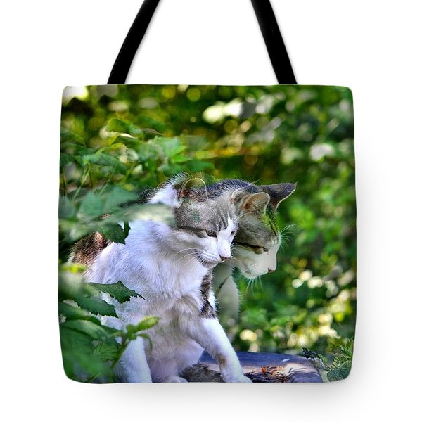 Harlequin Cat Twins Tote Bag