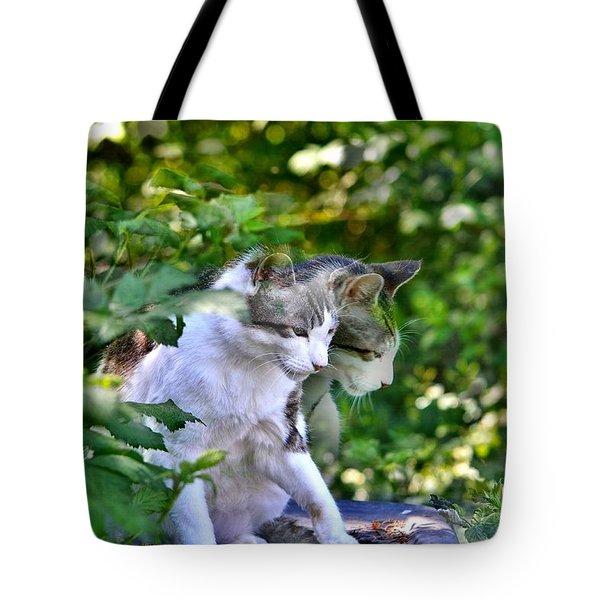 Harlequin Cat Twins Tote Bag