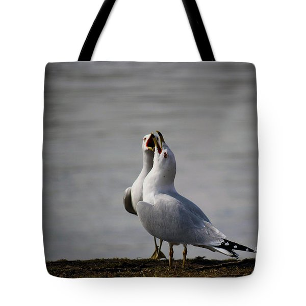 Harmonizing Seagulls Tote Bag