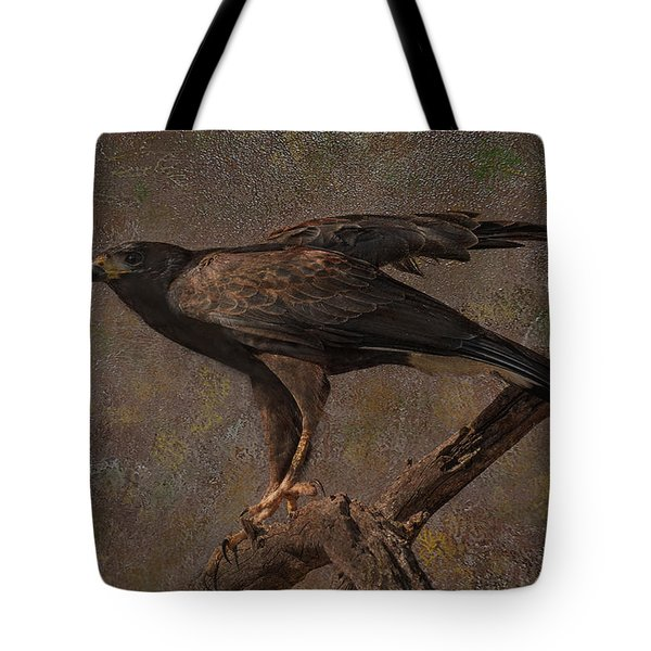 Tote Bag featuring the photograph Harris's Hawk by Barbara Manis