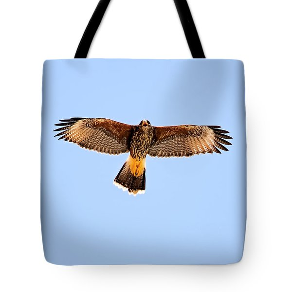 Tote Bag featuring the photograph Harris's Hawk H36 by Mark Myhaver