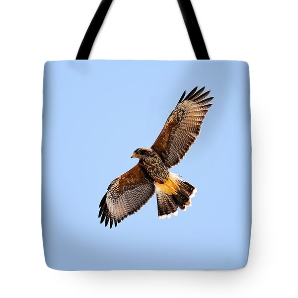 Tote Bag featuring the photograph Harris's Hawk H37 by Mark Myhaver