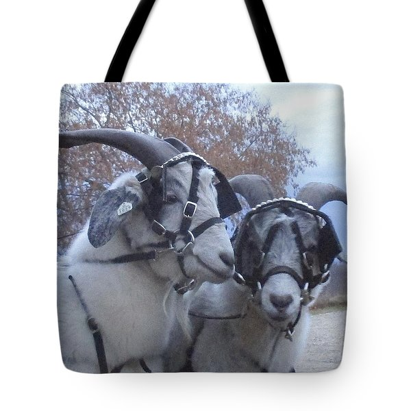 Harry And David In November Tote Bag