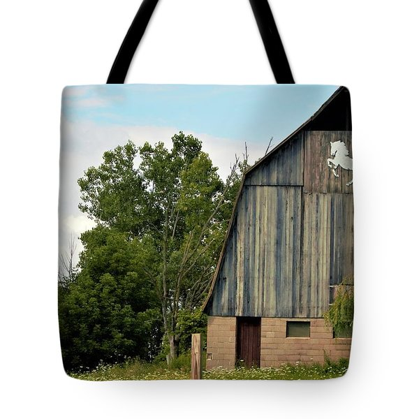 0017 - Hassler Lake Road Horse Barn Tote Bag