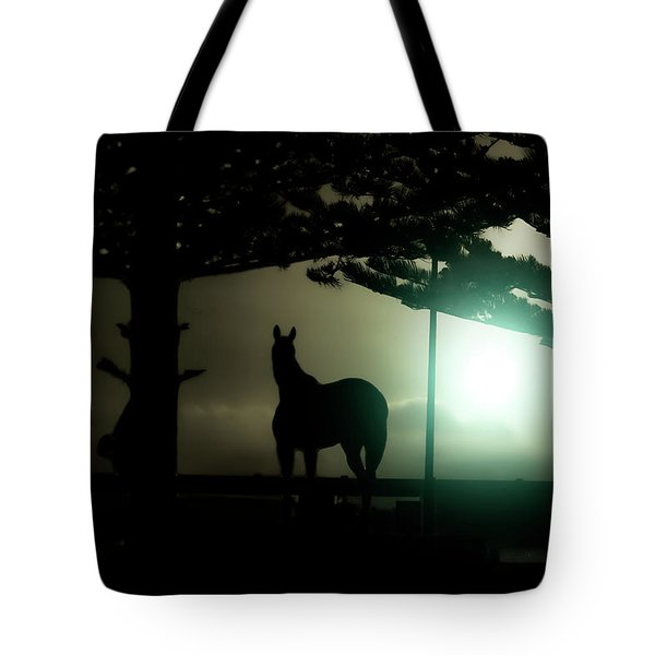 Hat-trick Tote Bag by Douglas Barnard