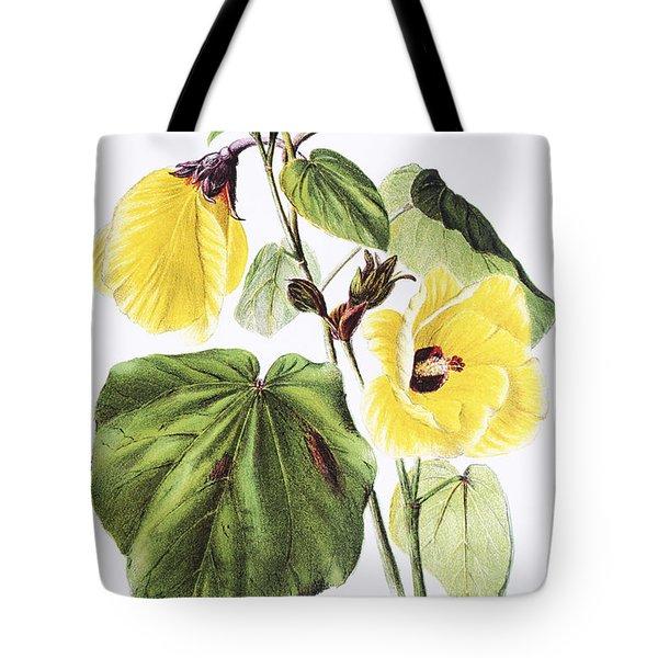 Hau Flower Art Tote Bag