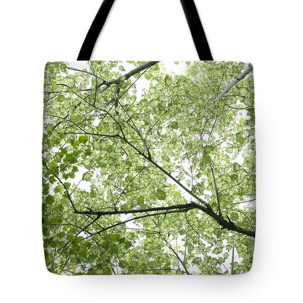 Hau Tree Canopy Tote Bag