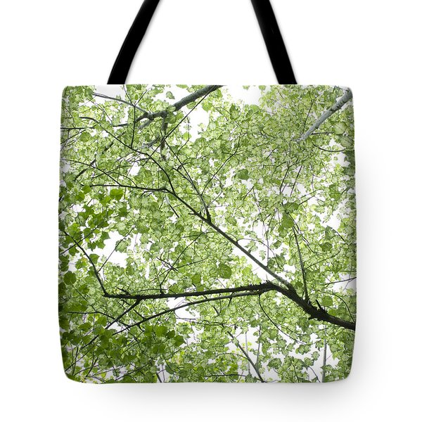 Tote Bag featuring the photograph Hau Tree Canopy by Charmian Vistaunet