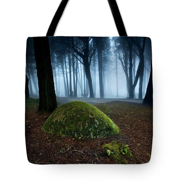 Tote Bag featuring the photograph Haunting by Jorge Maia