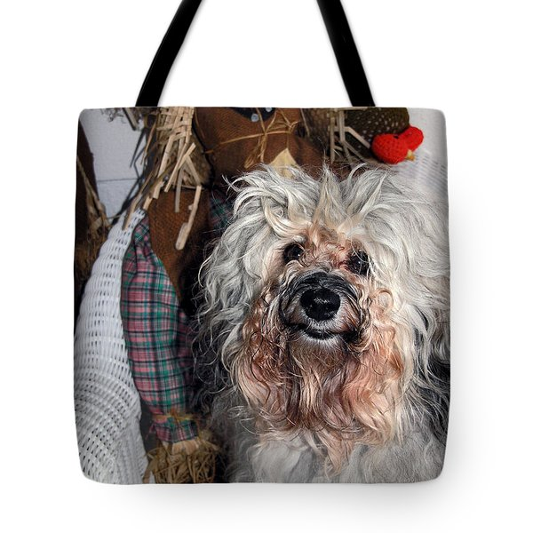 Havanese Cutie Tote Bag by Sally Weigand