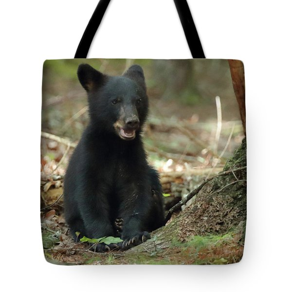Have You Seen My Mother Tote Bag