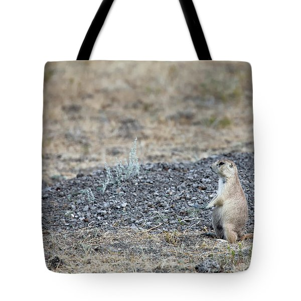 Tote Bag featuring the photograph Having A Look by David Buhler