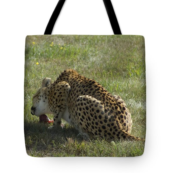 Having Lunch Tote Bag
