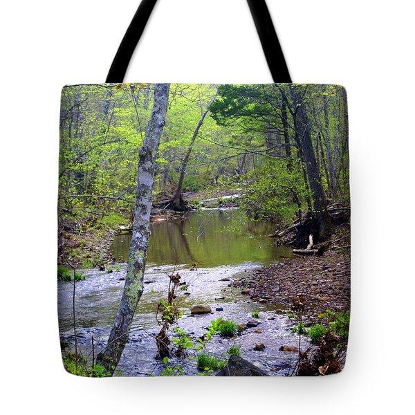 Haw Creek Tote Bag by Marty Koch