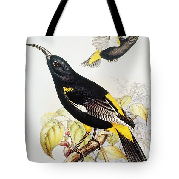 Hawaii Mamo Tote Bag by Hawaiian Legacy Archive - Printscapes
