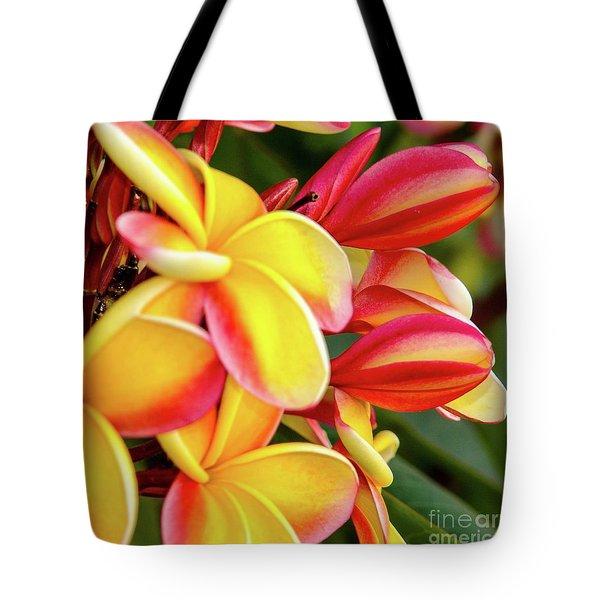Hawaii Plumeria Flowers In Bloom Tote Bag